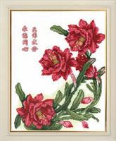 http://images.vfl.ru/ii/1409071237/ba7d7f45/6132704_s.jpg