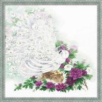 http://images.vfl.ru/ii/1409083522/f7e22f87/6135728_s.jpg