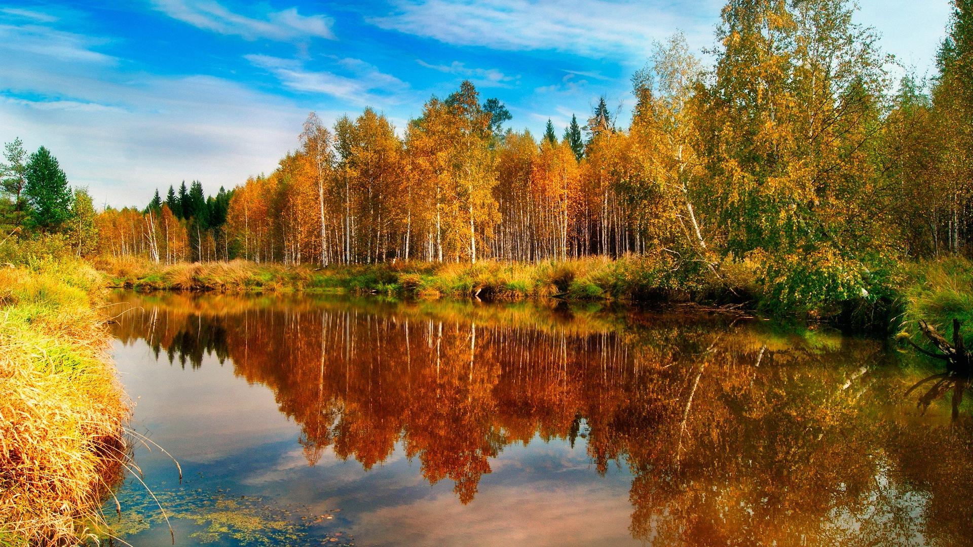 http://images.vfl.ru/ii/1409131318/7028a529/6140774.jpg