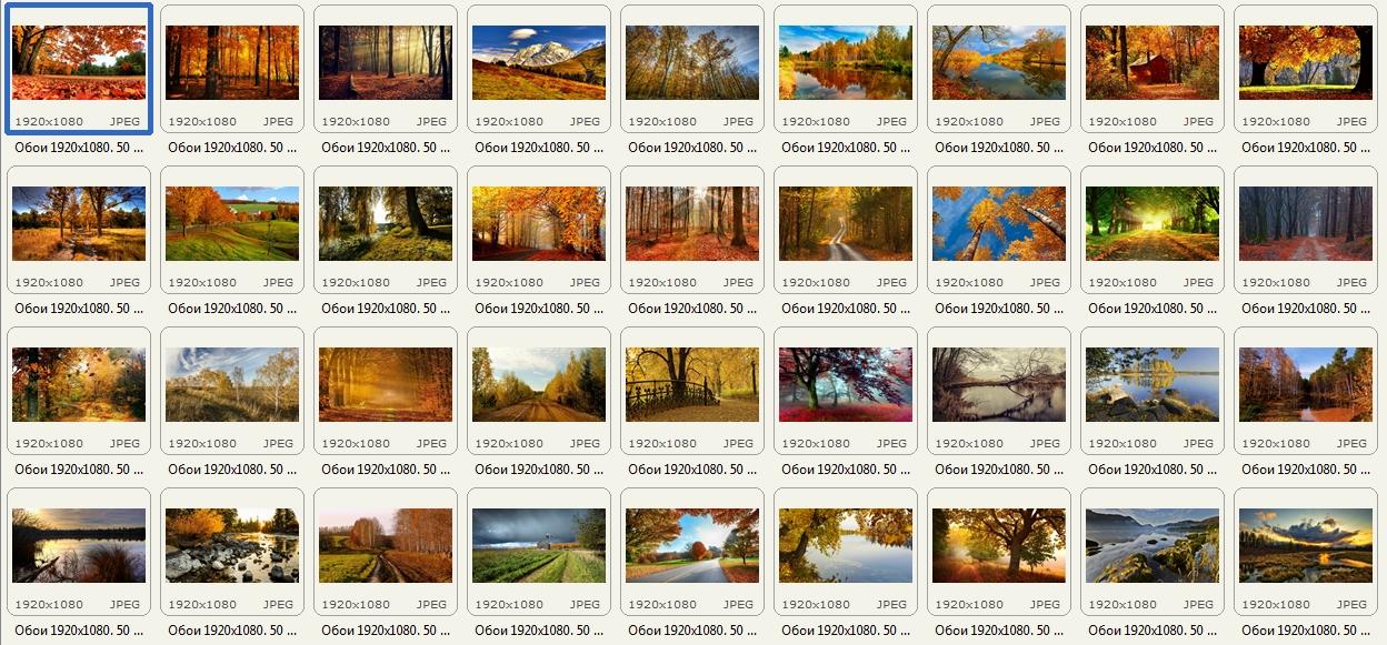 http://images.vfl.ru/ii/1409131379/c63c18d3/6140790.jpg