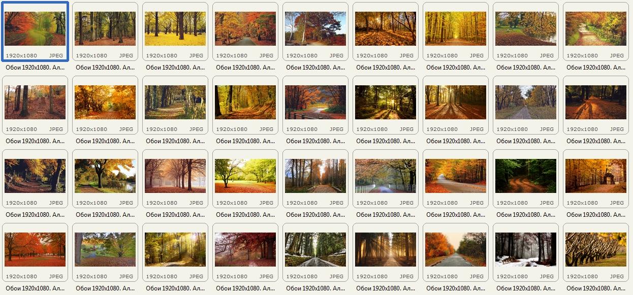 http://images.vfl.ru/ii/1409232379/9b113775/6154968.jpg
