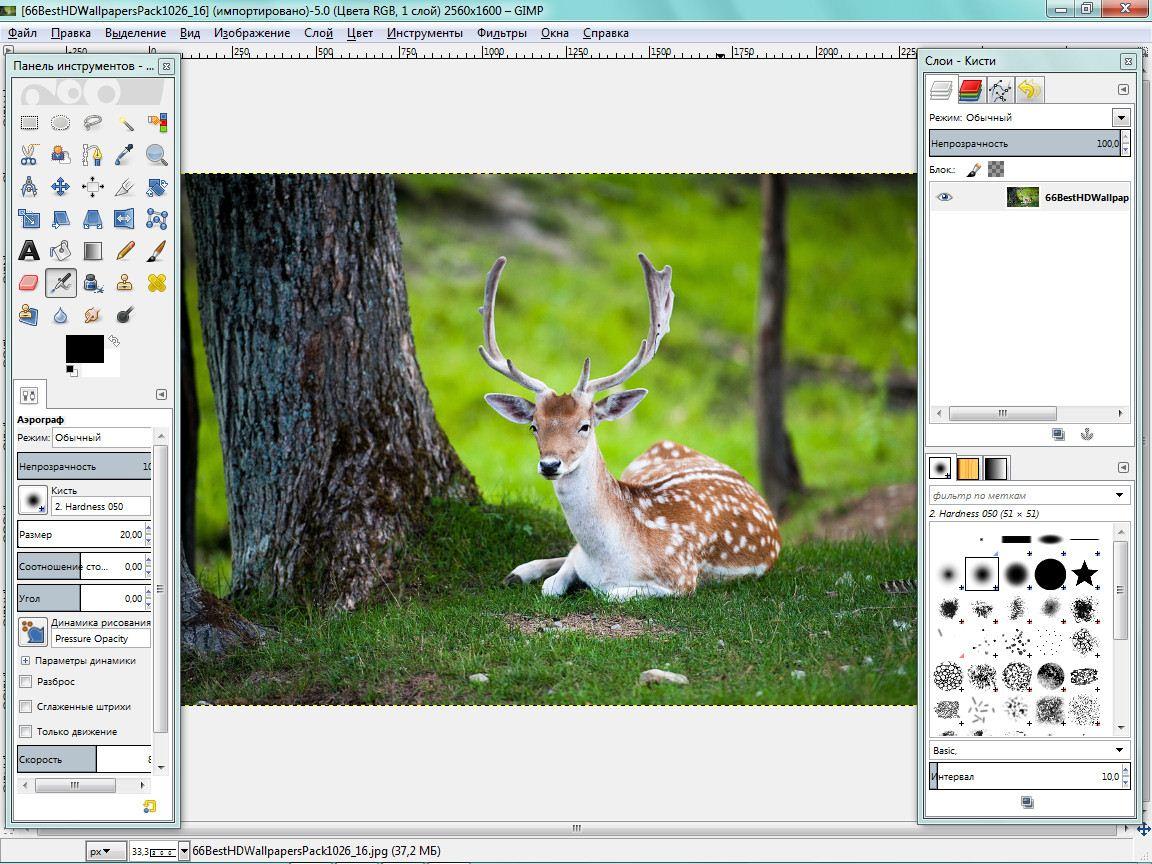 http://images.vfl.ru/ii/1409314465/33b7173b/6165748.jpg