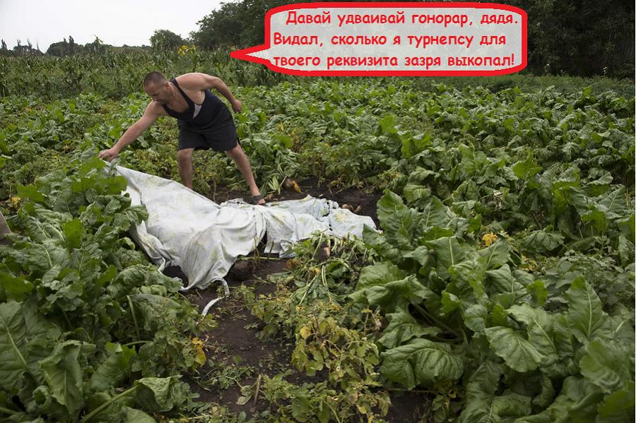 http://images.vfl.ru/ii/1409787181/057de0c8/6219751.png