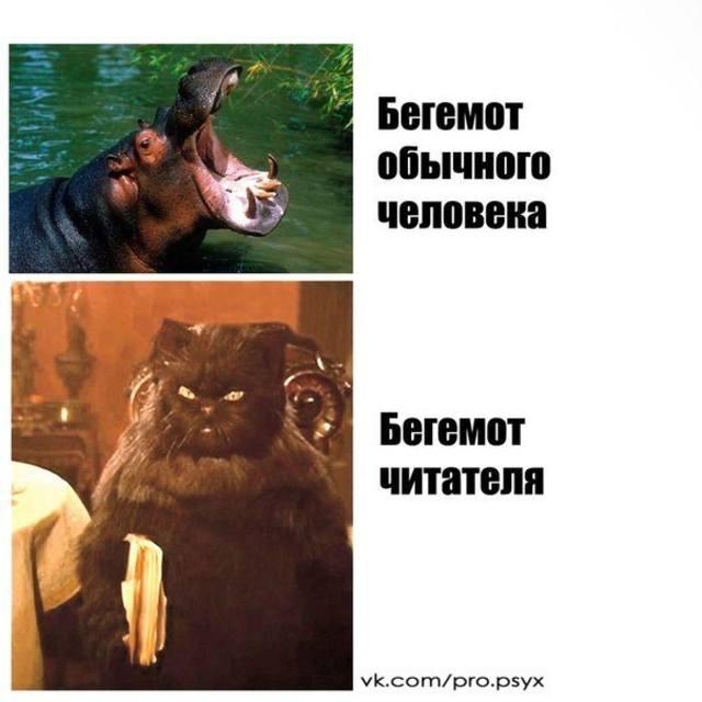 http://images.vfl.ru/ii/1410796654/566fe22f/6345458_m.jpg
