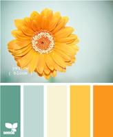 Цвет и цветовые сочетания 6352994_s