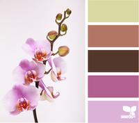 Цвет и цветовые сочетания 6352996_s