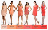 Цвет в одежде, аксессуарах. Модные тенденции. 6353382_s