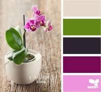 Цвет и цветовые сочетания 6368683_s