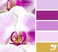 Цвет и цветовые сочетания 6368682_s
