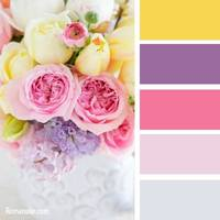 Цвет и цветовые сочетания 6368680_s