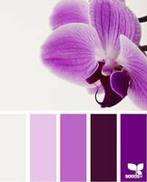 Цвет и цветовые сочетания 6368684_s