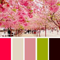 Цвет и цветовые сочетания 6368685_s