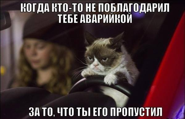 http://images.vfl.ru/ii/1411031761/6448b6ba/6372415_m.jpg