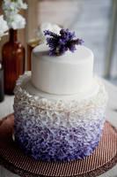Самые красивые торты 6389591_s