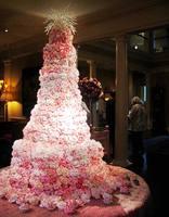 Самые красивые торты 6389593_s