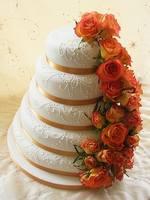 Самые красивые торты 6389594_s