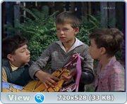 http//images.vfl.ru/ii/1411182389/fbcd8e08/6399881.jpg