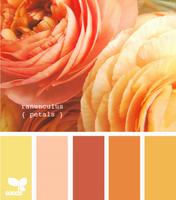Цвет и цветовые сочетания 6407372_s