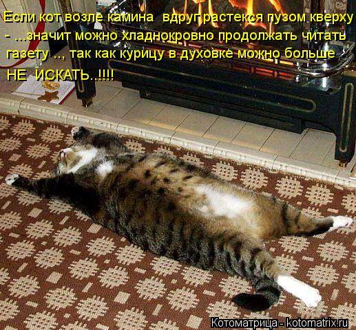 Кошки (Cats) - Страница 4 6473254_m