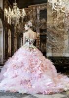 Самые красивые и необычные платья! 6494690_s