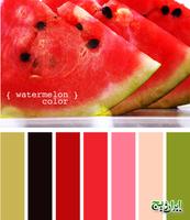 Цвет и цветовые сочетания 6494705_s