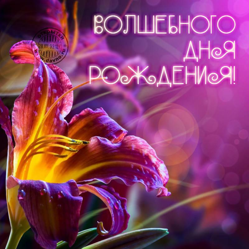 http://images.vfl.ru/ii/1411996144/1ed34598/6499959.jpg