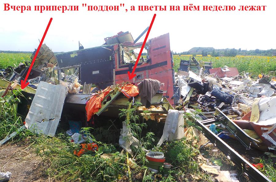http://images.vfl.ru/ii/1412061361/8e60577c/6506835.png
