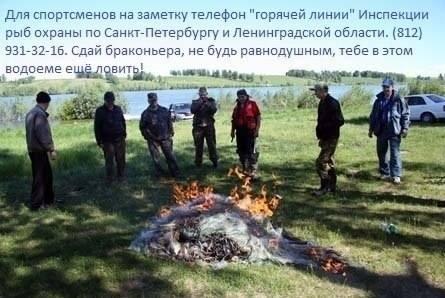 http://images.vfl.ru/ii/1412075970/e844f009/6508712_m.jpg