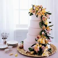 Самые красивые торты 6517081_s