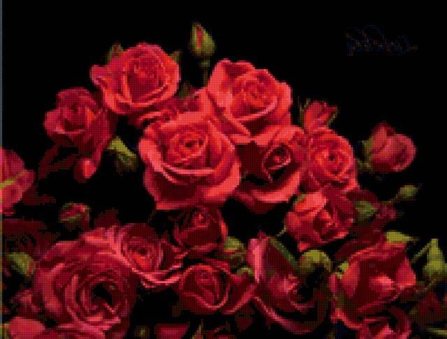 http://images.vfl.ru/ii/1412689290/7b776bfd/6575749_m.jpg
