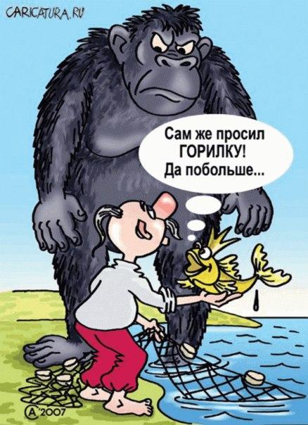http://images.vfl.ru/ii/1413131046/b4873713/6622438.jpg