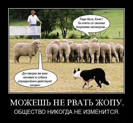 http://images.vfl.ru/ii/1414334694/27388955/6756884_m.jpg