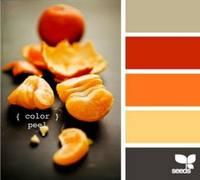 Цвет и цветовые сочетания 6768987_s