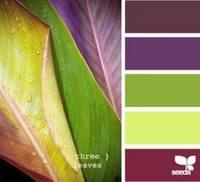 Цвет и цветовые сочетания 6768989_s
