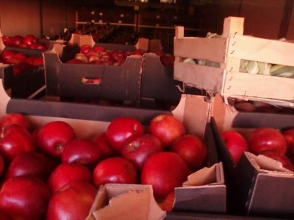 Смоленские таможенники предотвращают импорт продукции из стран Евросоюза 6794014_m