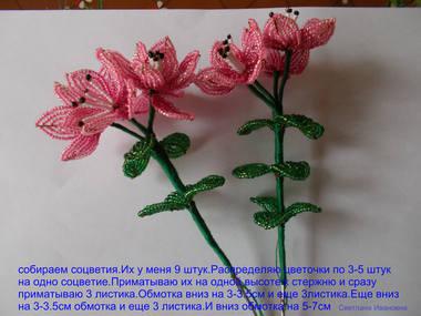 http://images.vfl.ru/ii/1415193255/3aa01824/6851336_m.jpg