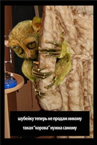 http://images.vfl.ru/ii/1415378764/d02c83c7/6873855_m.jpg