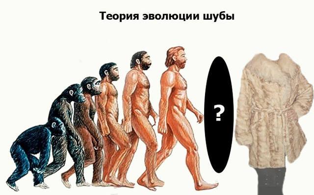 http://images.vfl.ru/ii/1415379069/30a3333c/6873906_m.jpg