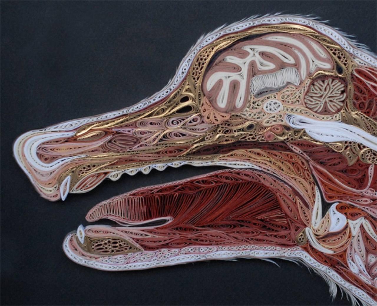 Уроки анатомии от аллы 12 фотография