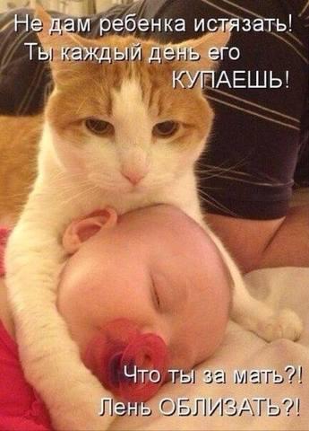 http://images.vfl.ru/ii/1416073187/ba454d71/6953495_m.jpg