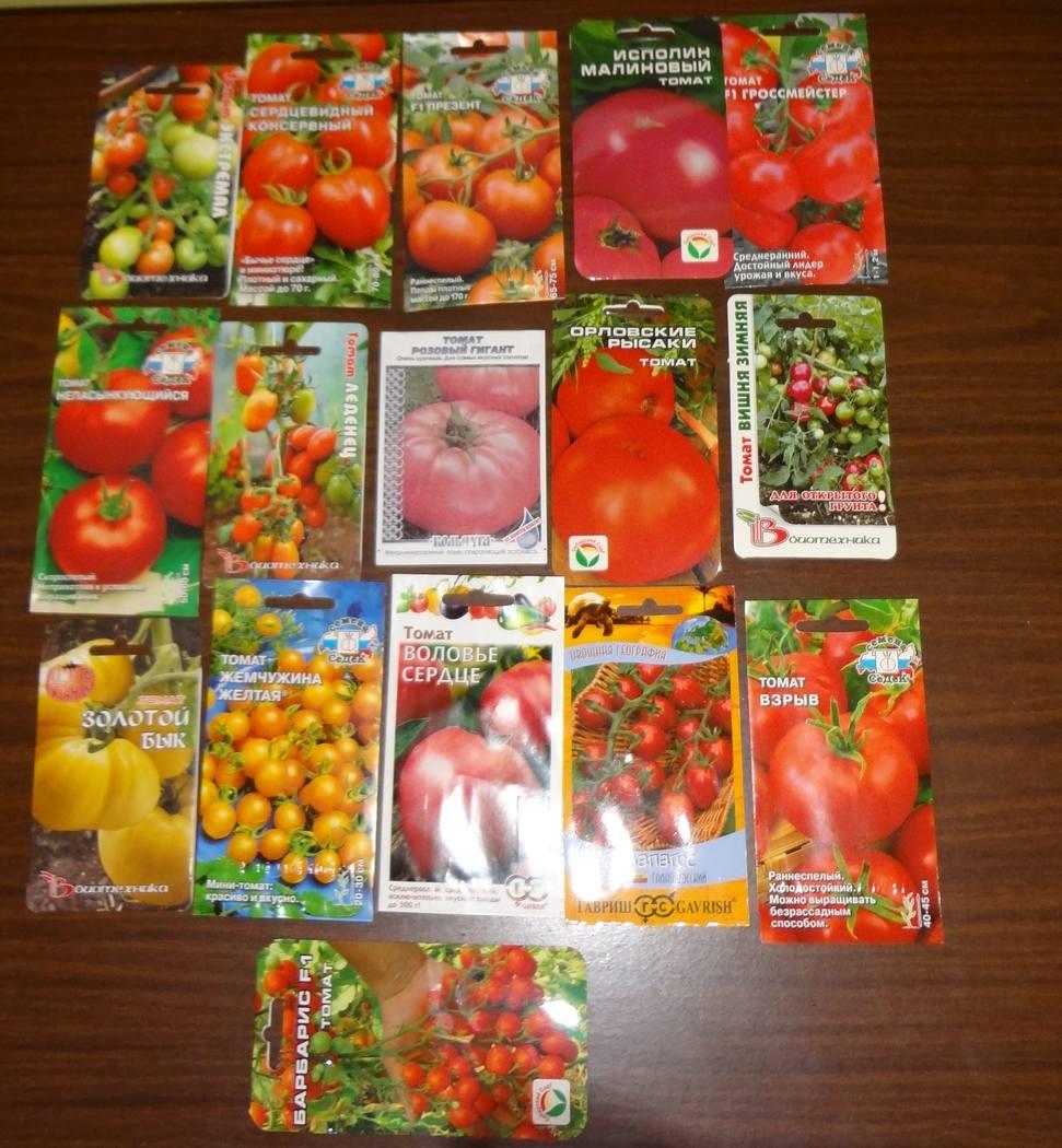 pomidori-slot-otzivi-foto