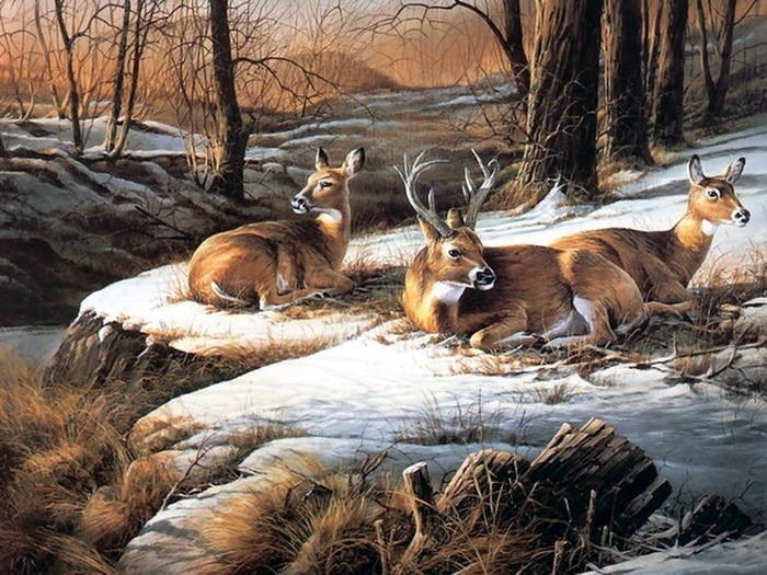 Современная живопись - Разное - Страница 3 7150054_m