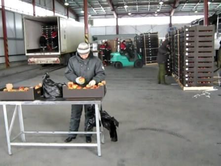 Смоленские таможенники предотвращают импорт продукции из стран Евросоюза - Страница 2 7199041_m