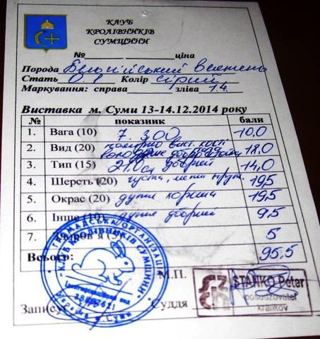 Клуб кролиководів Сумщини - Страница 2 7219500_m
