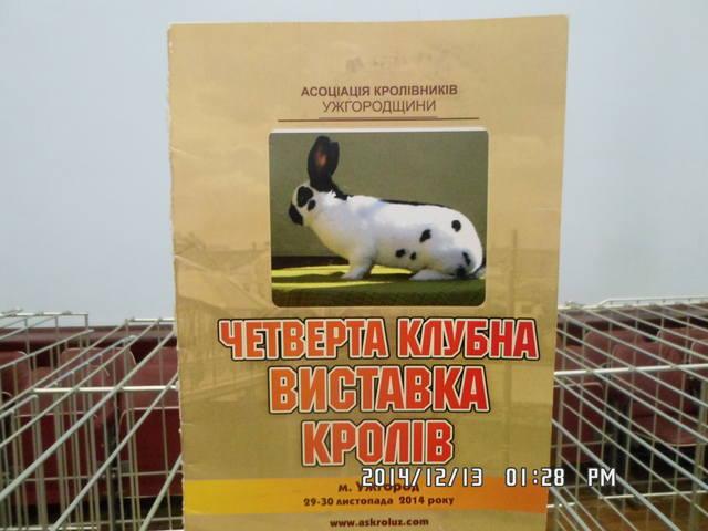 выставка в Ужгороде. - Страница 7 7226705_m