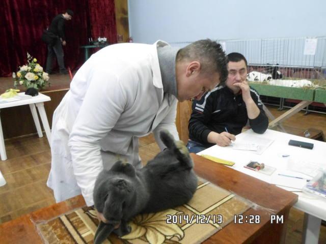 Клуб кролиководів Сумщини - Страница 3 7227820_m
