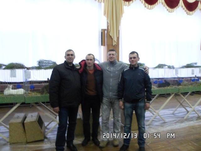 Клуб кролиководів Сумщини - Страница 3 7230979_m