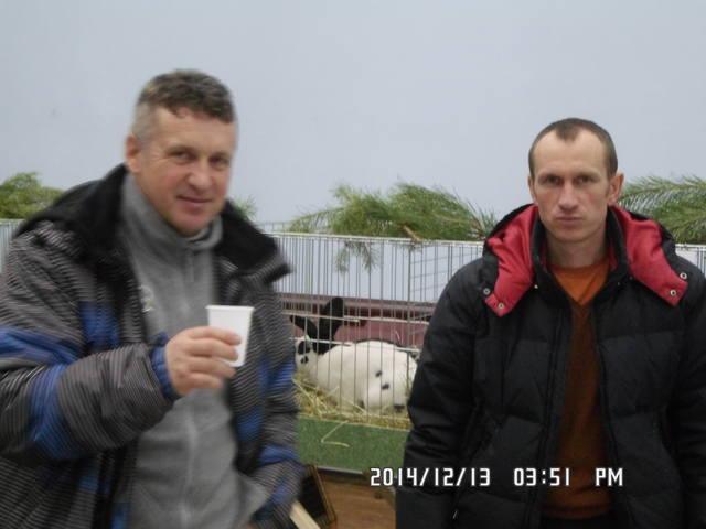 Клуб кролиководів Сумщини - Страница 3 7231006_m