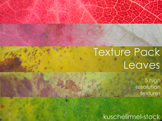 Leaves - Textures Pack