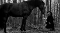 Папуша / Papusza (2013) DVDRip
